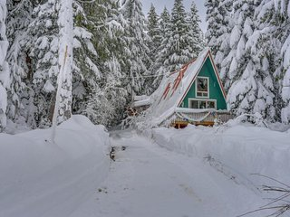 Dog-friendly cabin with room for eight, close ski access!, Government Camp