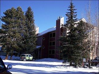 Walk to Base of Peak 9 - Totally Remodeled (13322), Breckenridge