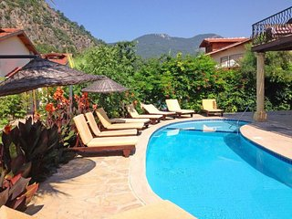 Spacious Turkish Villa with pool, Ortaca