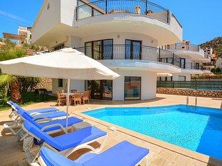 Villa Nesli 1