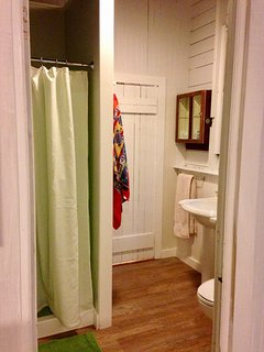 roomy downstairs shower renovated in 2016.
