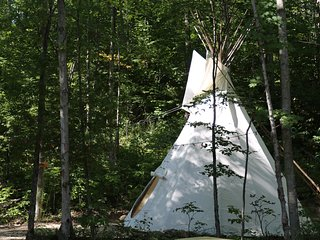 4 Season Tipi2 - Bed & Breakfast