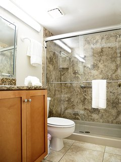 Beautiful renovated master ensuite with walk in shower