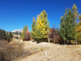 Mt. Oxford Chalet at Creekside Chalets, Salida