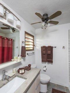 Rock house master bathroom
