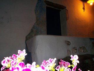 casa padronale con giardino