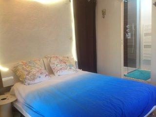 Chambre spacieuse (25m2) et calme ( entree et sdb privative), Eguilles