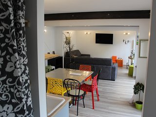 Reims Centre Cathedrale Maison tout confort terrasse parking 10 personnes