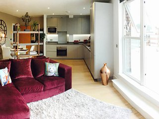 Brixton Penthouse with large Private Terrace, London