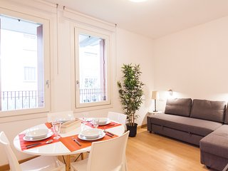 Stylish ans spacious apartment, Milan