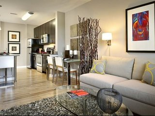 Ultra Hip, Modern & Luxurious APT DC - 2 Blocks to Union Station & The Capitol, Washington DC