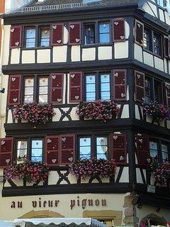 Une façade aux géraniums d'Alsace, à 50m.