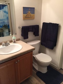 Hall Full Bathroom Tub and Shower