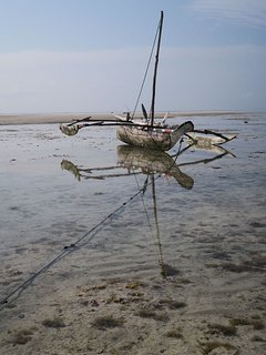 A dau with low tide