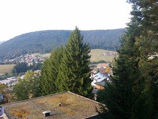 Grand f1 en forêt Noir idéal pour vos vacances loin des tumultes de la ville, Baiersbronn