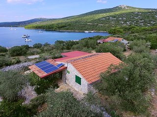 Pet friendly house Murtelica, Dalmatia, Pasman