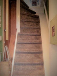 Newly recarpeted traditional dutch staircase. It's a little steep but we've added lots of handrails!