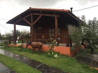 Casitas Vacacionales Laderas del Valle - Ainhoa, La Orotava