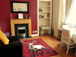 Centrally located, entire 1BD apartment / free WiFi, Edinburgh