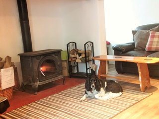 Blanketts - near dog friendly beaches, Williton