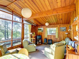 The well-furnished living room is wood clad and has an electric 'coal burner'