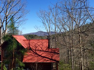 Just Bearly Log Cabin, Blairsville
