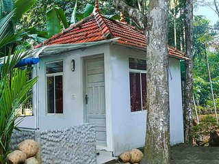 Ponmudi Valley Resort (Standard Cottage)