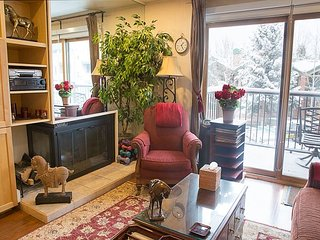 2BR, 2BA Aspen Condo, 2 Blocks from Gondola, Steps from Stores
