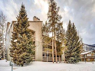Near Shops & Ski Resorts! Cozy 2BR, 2BA Frisco Condo w/ Lake Views