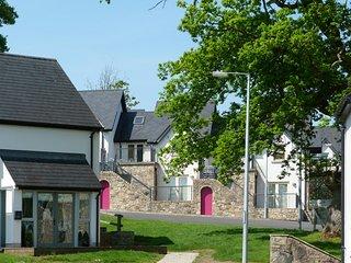 Mountshannon, Lough Derg, County Clare - 10360
