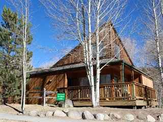 Mt. Elbert Chalet at Creekside Chalets