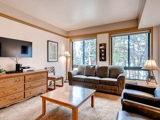 Slopeside Studio Condo Sleeps up to 4 Kids Ski Free! ~ RA134209, Keystone