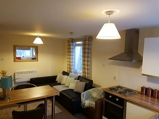 1 bedroom apartment 10 mins walk to Town, Cardiff