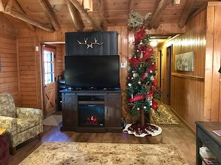 Sleeps 16 Lake View Hike to Lake Secluded 2mi to SDC Beautiful Log Cabin Retreat, Branson