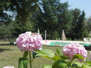 AGRITURISMO NATURALINDA - APPARTAMENTO FIOR DI LOTO, Colle di Val d'Elsa
