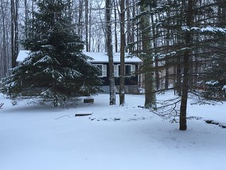 Tranquility Cottage at Arrowhead Lake, Close to 3 Ski Slopes! ~ Fplc, Fpit, WiFi