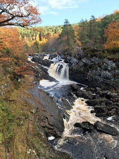 The stunning Rogie Falls, 10 minutes drive away