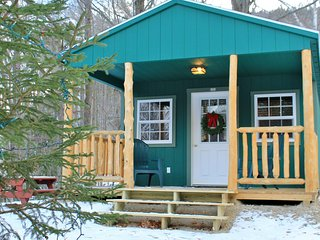 Cozy Cabin - Private 33 Acres $89, Shelburne