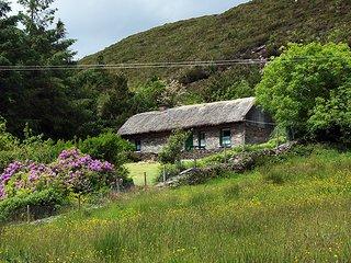 181 - Caragh Lake, Glenbeigh