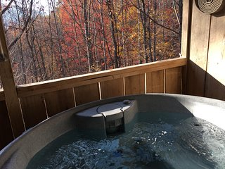 Bearidise  in the Mtns! - Hot Tub, Fireplace, Near Asheville, View, Fire Pit, Fr