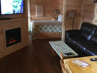 Dreamin Hollow Great for Stargazing!- Private Hot Tub, Fireplace, Romantic