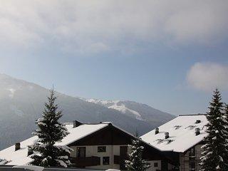 Sonnenhang #6155.2, Muhlbach am Hochkonig