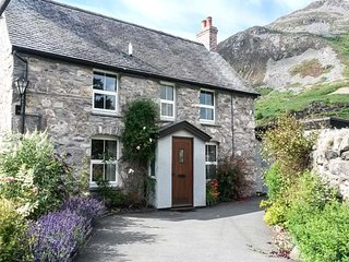 BODYWEN, woodburning stoves, en-suite bedrooms, walks from the door, Llangynog,