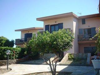 Bilo Janna #11423.1, Asinara