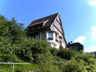 Kapellenberg #4415.2, Triberg