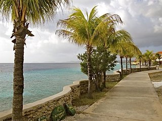 Delightful Waterfront 1 BR Condo on Bari Reef