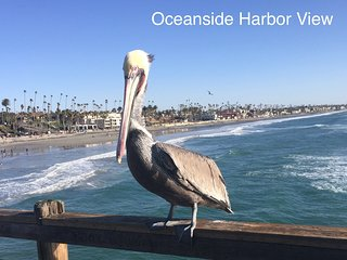 100 % Satisfaction Guarantee ....Beach Livin', Oceanside