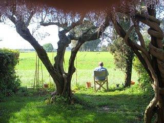 casa rurale con giardino