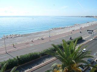 La Floride #3990.1, Niza