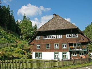 Historische Sagemuhle #4418.1, Furtwangen im Schwarzwald
